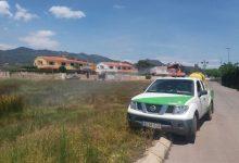 Benicàssim programa un tractament larvicida intensiu en el Quadre de Santiago