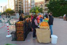 Castelló reforça la seua aposta per l'agricultura ecològica per a defensar el dret a una alimentació sana