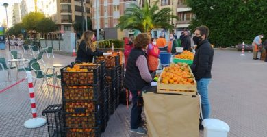 Castelló refuerza su apuesta por la agricultura ecológica para defender el derecho a una alimentación sana