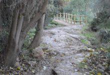 El Consorci gestor del Paisatge Protegit de la Desembocadura del riu Millars a Vila-real ha iniciat la reposició de l'equipament deteriorat de la zona fluvial