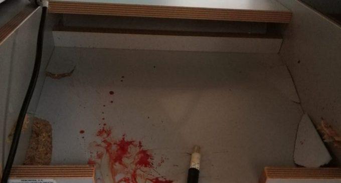 La Policia Local de Benicarló deté un home per delictes d'amenaces, desobediència i resistència greu