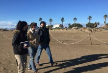 L'Ajuntament de Castelló col·labora amb SEO Bird Life per millorar l'hàbitat del corriol camanegre