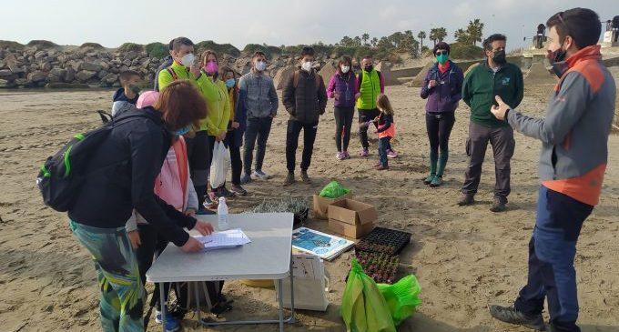 Castelló posa en valor la riquesa natural de les seues platges i millora l'ecosistema del corriol en una jornada de voluntariat ambiental