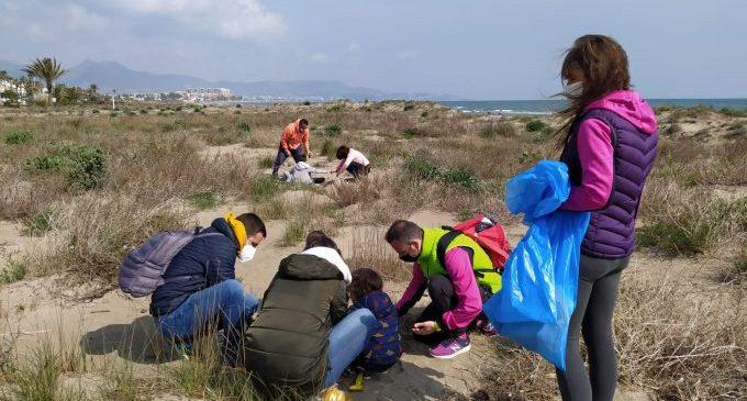 Castelló impulsa una revegetació de 1.569 plantes autòctones al Serradal i el Pinar per a protegir el camanegre