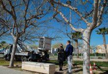 Castelló inicia la transformación eficiente del 90% de su alumbrado con una inversión de 10,5 millones de euros