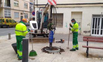 Vinaròs realiza tareas de mantenimiento del arbolado y zonas ajardinadas