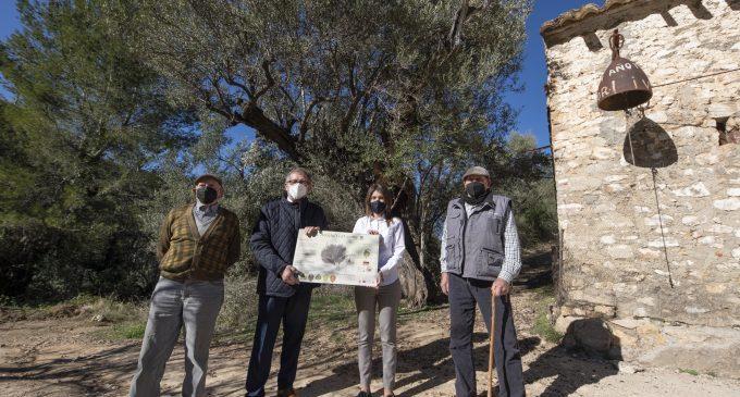 La Diputación invertirá 380.000 euros en proyectos de las entidades locales de la provincia que ayuden a poner en valor el medio natural