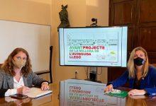 Castelló prioritza la creació d'ocupació en la licitació de la millora de l'avinguda Lledó