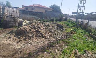 Vinaròs inicia un proyecto piloto para transformar los restos de poda en abono