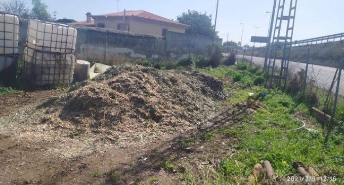 Vinaròs inicia un projecte pilot per transformar les restes de poda en adob