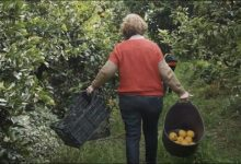 Castelló impulsa un vídeo para realzar el papel de la agricultura para alimentarnos y proteger el paisaje e implicar a la ciudad en su recuperación