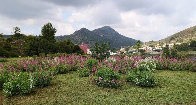 La Vall d'Uixó mejora la conexión entre el parque del Acueducto y el Centro de Salud II