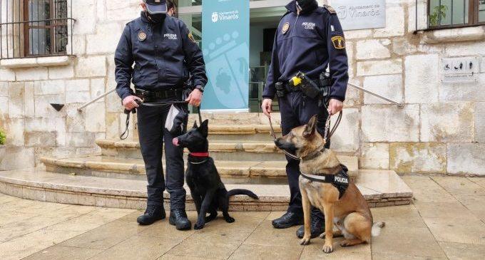 Vinaròs compta amb una nova unitat canina