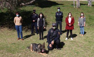 Onda ofrece terapia a víctimas de violencia de género con la ayuda de perros abandonados