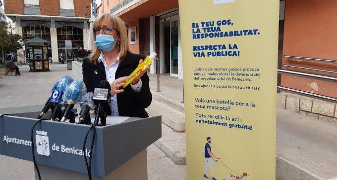 Benicarló treballa per a evitar els problemes causats per l'orina dels gossos