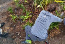 El taller 'Et Formem' de Benicarló per a persones amb dificultats d'inserció laboral es prorroga un any