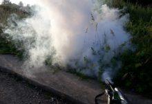 Borriana reforça a l'abril el tractament contra els mosquits