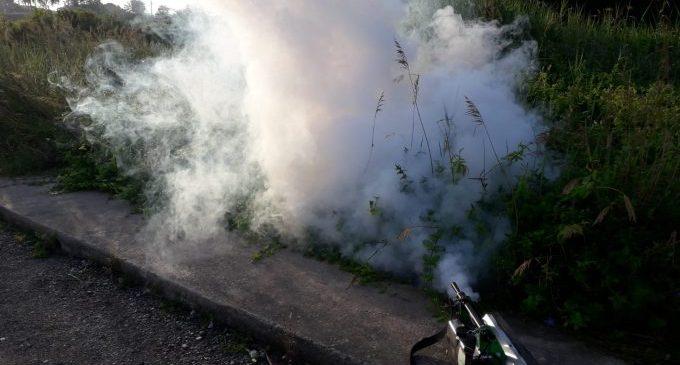 Burriana refuerza en abril el tratamiento contra los mosquitos