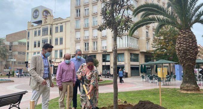 Castelló se suma a la campanya #UnÁrbolPorEuropa