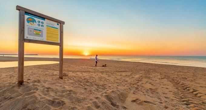 Platges per a gossos, lliures de fum i més netes de Castelló