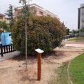 Nules s'adhereix a la iniciativa mediambiental #Unárbolporeuropa i planta dos arbres per a donar suport a la sostenibilitat