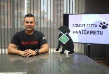 Onda llança una campanya de conscienciació per a evitar l'abandó de mascotes a l'estiu