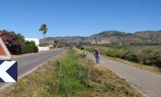 Benicàssim realiza tareas de desbroce en distintos puntos de la zona sur