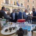 La Diputació dona suport al sector de la trufa amb 10 mil euros per a la celebració de fires promocionals
