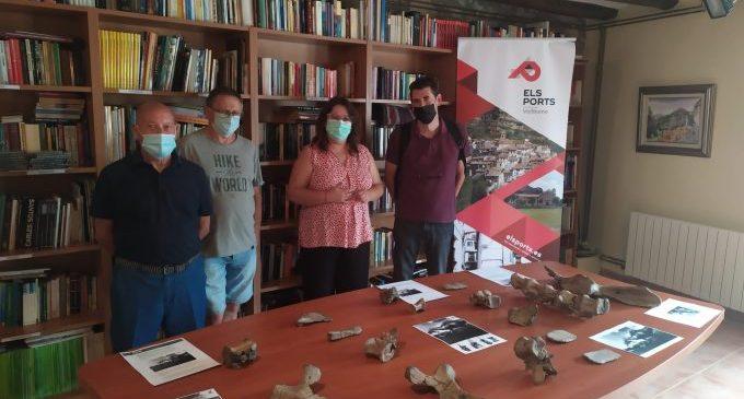 La Diputación colabora en la constitución de un museo en Vallibona con la reproducción de los huesos del dinosaurio local