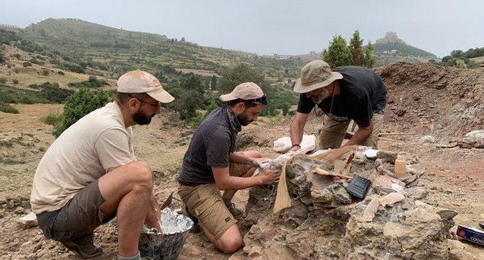 Extrauen ossos i petjades de dinosaures sauròpodes en l'excavació del jaciment del Mas de Romeu de Morella