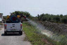 La Diputación activa una nueva tanda de fumigaciones para evitar la proliferación de mosquitos tras las lluvias de los últimos días