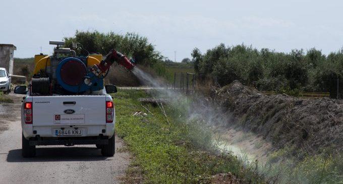 La Diputació activa una nova tanda de fumigacions per a evitar la proliferación de mosquits per les pluges dels últims dies