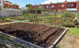 Benicàssim rep 45 sol·licituds per a optar als 20 horts urbans sostenibles disponibles