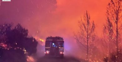 L'incendi forestal d'Azuébar, el més important de la Comunitat Valenciana, afecta ja a 500 hectàrees