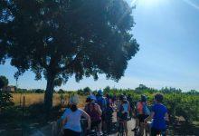 Castelló organitza una ruta ciclista en la Marjaleria per a realçar la seua riquesa ambiental i la seua importància ecosistèmica
