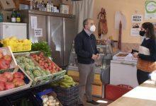 La província tindrà cinc insectaris per a combatre el cotonet amb 36.000 euros