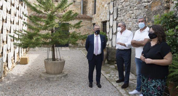 Martí posa en valor les troballes històriques obtingudes en el jaciment arqueològic de Tossal de la Vila a Serra d'en Galceran