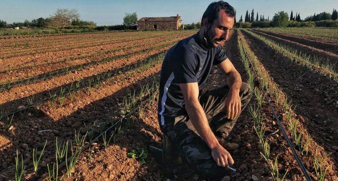 Castelló impulsa un concurs de fotografia per a descobrir el millor paisatge agrari amb premis de 900, 600 i 400 euros