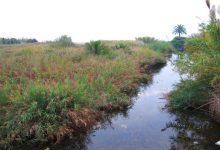 Benicarló reivindica al Govern la recuperació del projecte de canalització de la rambla d'Alcalà