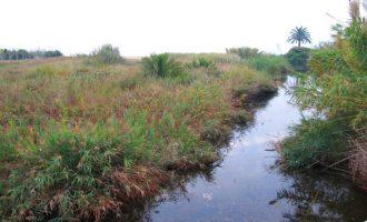 Benicarló reivindica al Gobierno la recuperación del proyecto de canalización de la rambla d'Alcalà